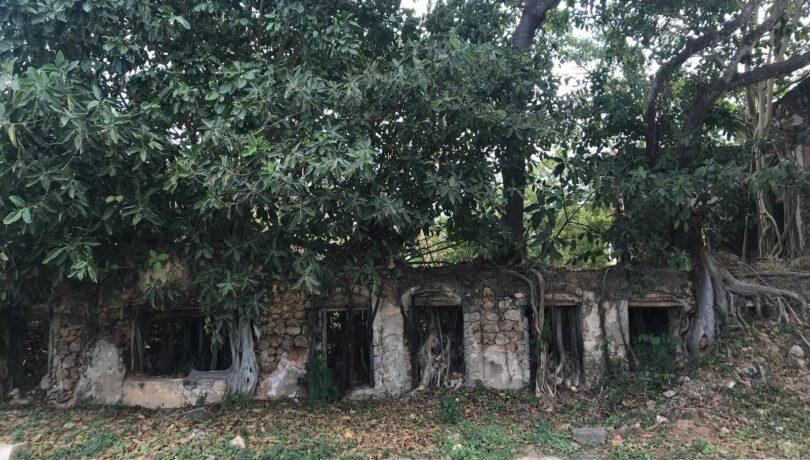 Lindi ruins 3- July 2019